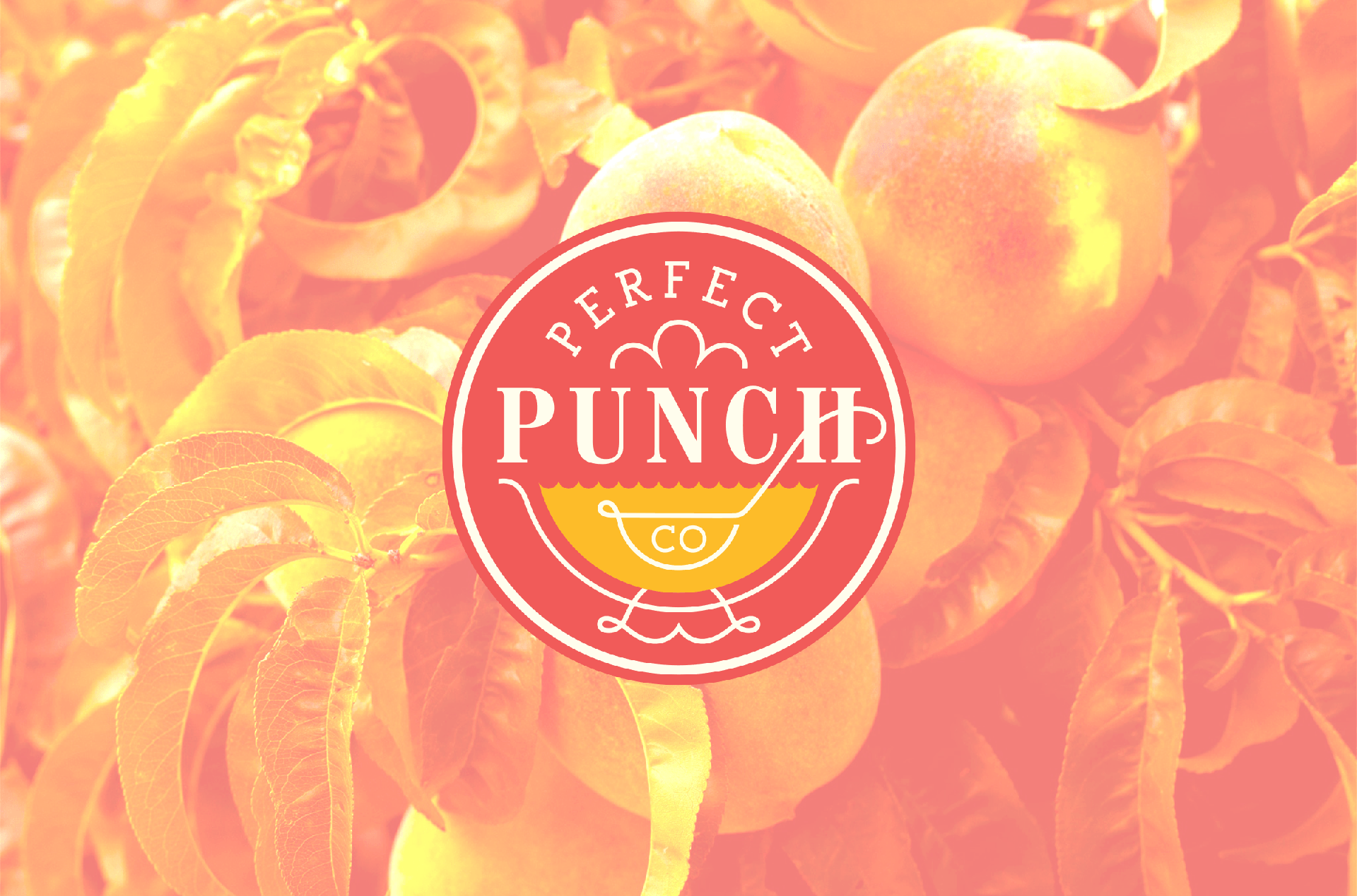 1_web_perfectpunch_1